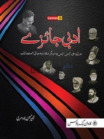 Css Book In Urdu